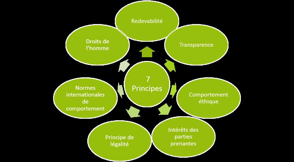 les 7 principes en rond